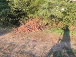 dumping on commonground